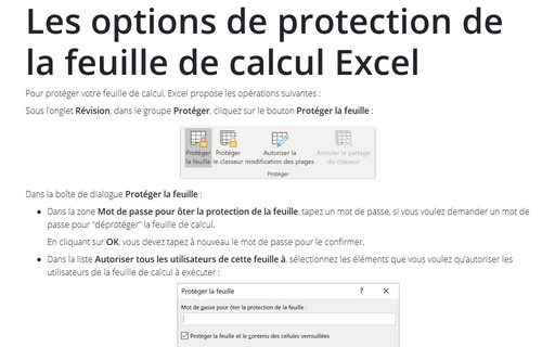 Les options de protection de la feuille de calcul Excel